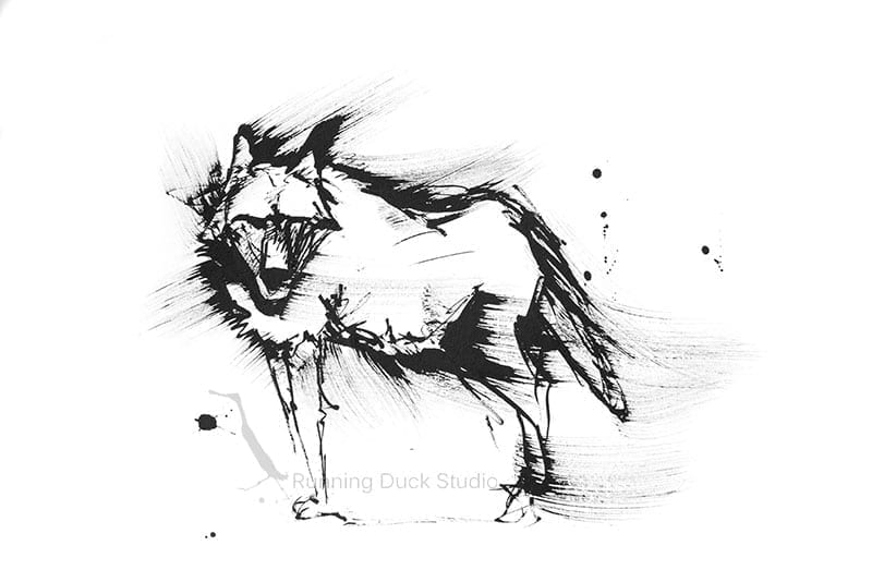 Running Duck Studio Ink Gallery - Wolf artwork by Running Duck Studio