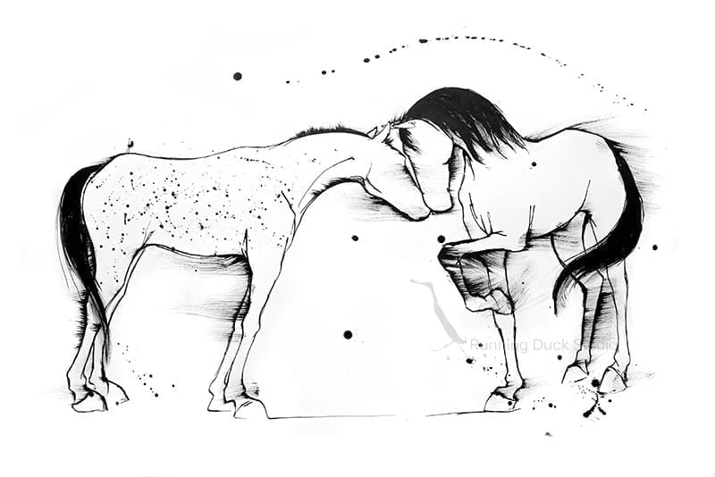 Running Duck Studio Ink Gallery - Black and White ink sketch of horses greeting
