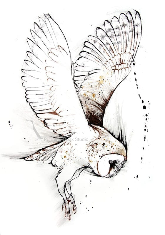 Ink drawing of a flying owl