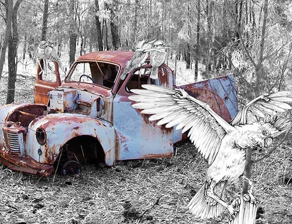 Fantasy birds on an old truck in the bush