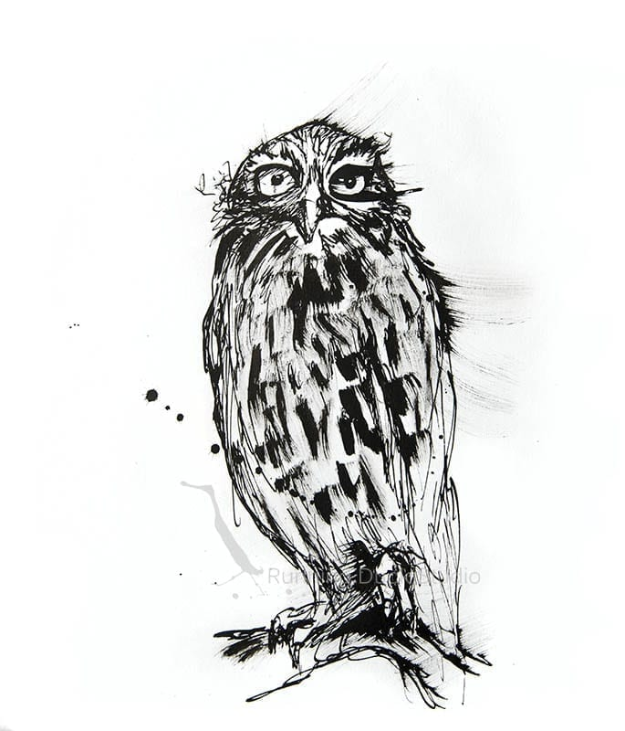 drawing of a Barking Owl
