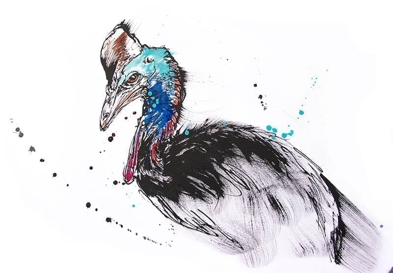 painting of an endangered Cassowary bird