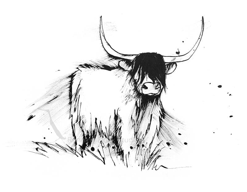 Artwork of Longhair Cow