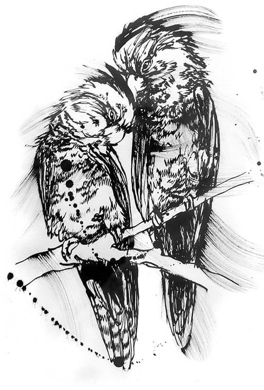 Black Cockatoo painting