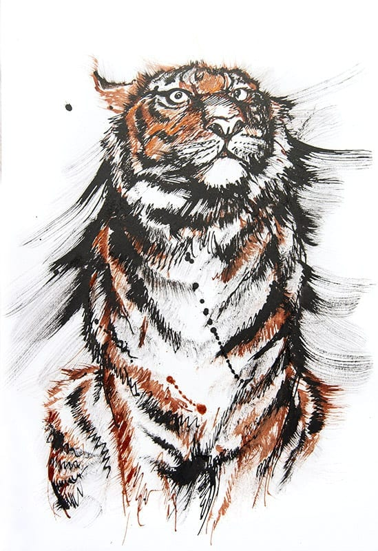 Colourful tiger drawing