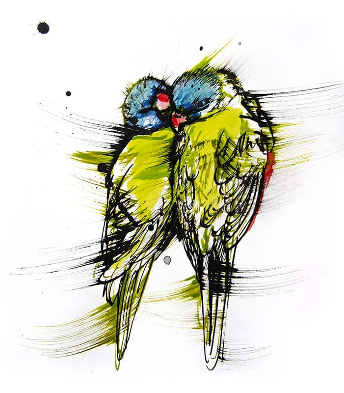 Colourful drawing of Rainbow Lorikeet
