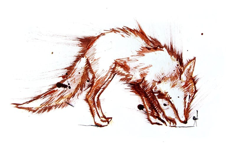 colourful fox drawing